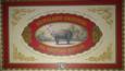 Logo Animalario Universal.png