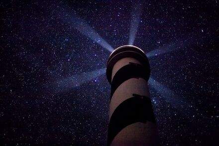 Stars Alex Pitt.jpg